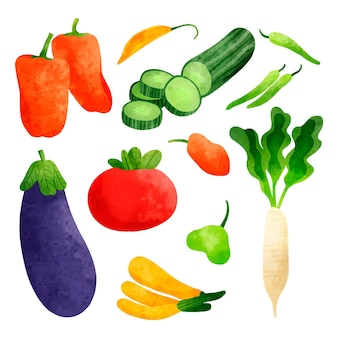 Coleção de vegetais pintados à mão