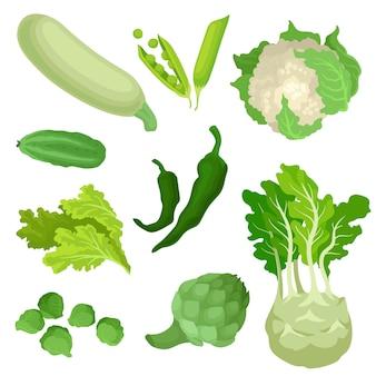 Coleção de vegetais verdes orgânicos.