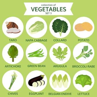 Coleção de vegetais