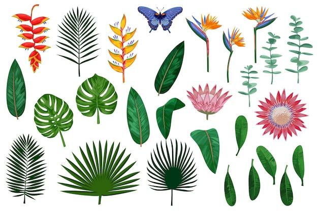 Coleção de vetores de flores e folhas tropicais conjunto exótico isolado no fundo branco