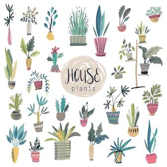 Coleção de vetores de plantas caseiras em vasos conjunto colorido bonito desenhado à mão