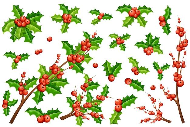 Coleção de visco de natal. galhos de visco com folhas verdes e sem.