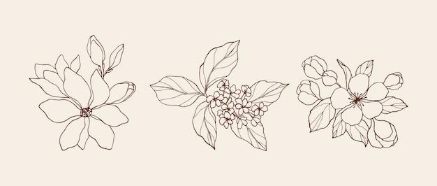 Coleção desenhada à mão de flores elegantes