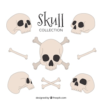 Coleção desenhada mão dos crânios e dos ossos