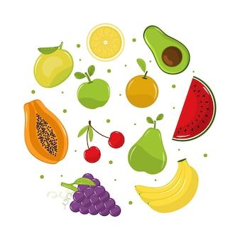 Coleção detalhada de frutas saborosas