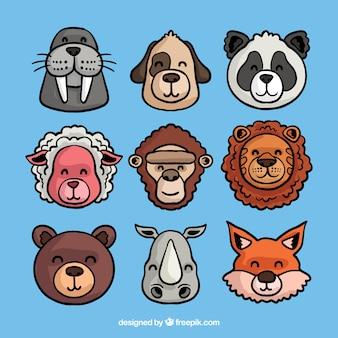 Coleção divertida de caras de animais
