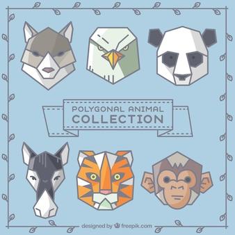 Coleção do animal poligonal