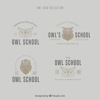 Coleção do logotipo da coruja