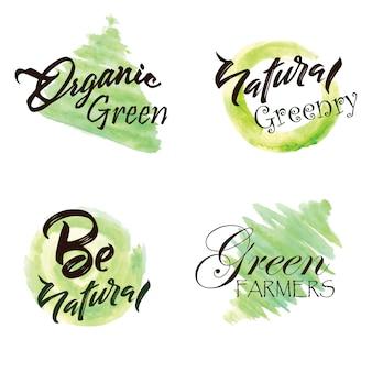 Coleção do logotipo das folhas verdes da aguarela