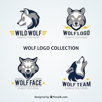 Coleção do logotipo do lobo da empresa moderna
