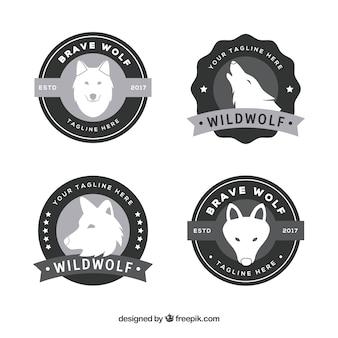 Coleção do logotipo do lobo do vintage de design plano