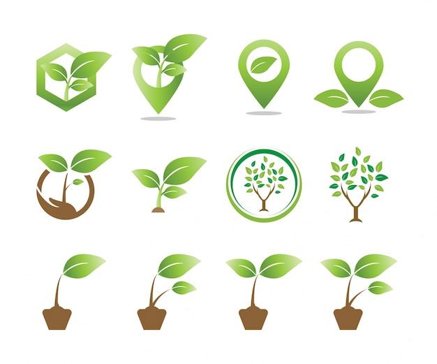 Coleção do modelo de logotipo do logotipo da agricultura