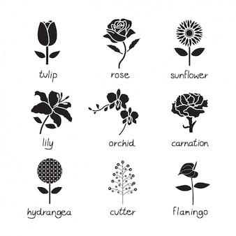 Coleção dos ícones da flor