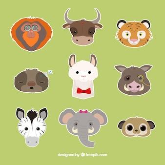 Coleção emoticon de animais diferentes expressivos