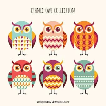 Coleção étnica das corujas de seis