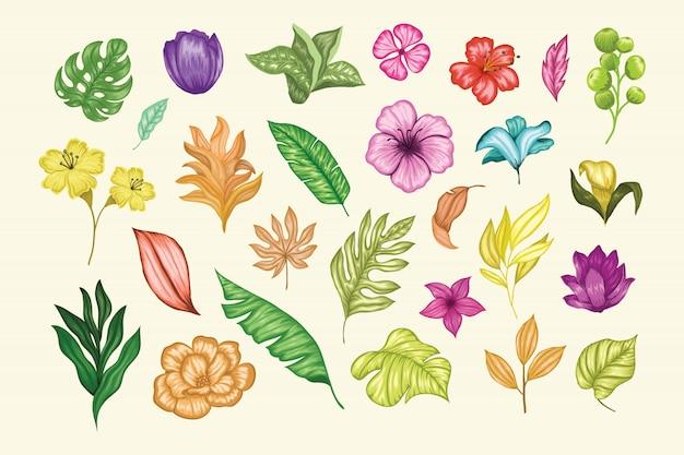 Coleção floral bonita mão vintage desenhada Vetor Premium