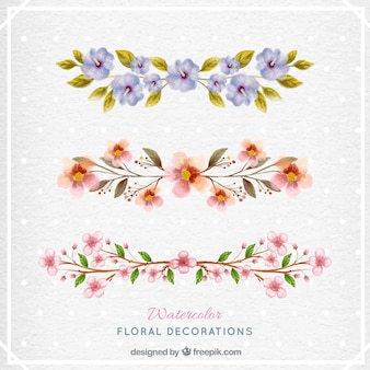Coleção floral da aguarela