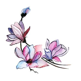 Coleção floral e folhas de primavera de aquarela