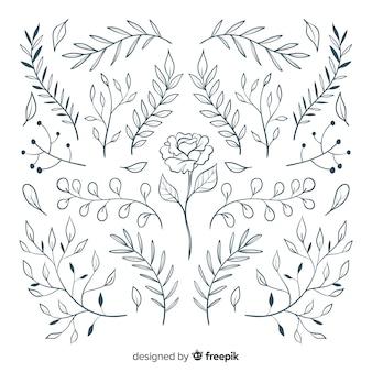 Coleção floral ornamento desenhado à mão
