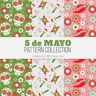 Coleção floral padrões com elementos do méxico