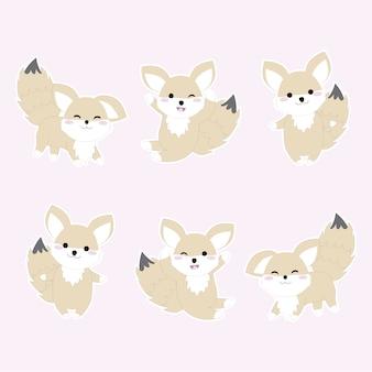 Coleção fox de raposa