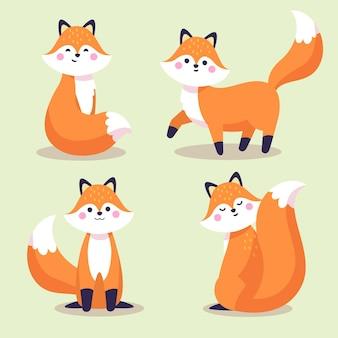 Coleção fox desenhada