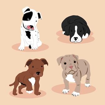 Coleção ilustrada de pitbull desenhada à mão