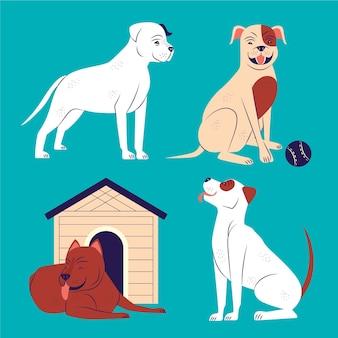 Coleção ilustrada de pitbull plano orgânico