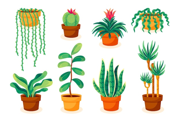 Coleção ilustrada de plantas de casa desenhada à mão