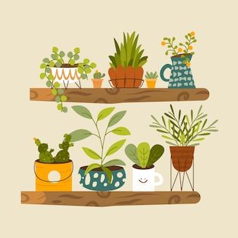 Coleção ilustrada de plantas de interior planas