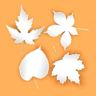 Coleção lindas folhas de outono isoladas em fundo laranja conjunto de folhas brancas