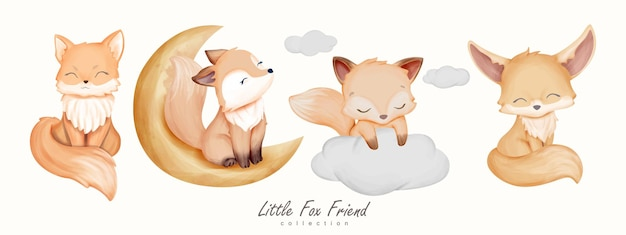 Coleção little fox friend animal
