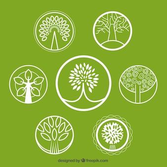Coleção logos árvore
