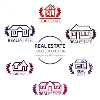 Coleção logotipo do estado real