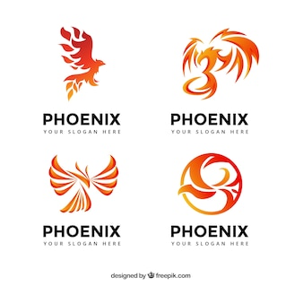 Coleção logotipo phoenix