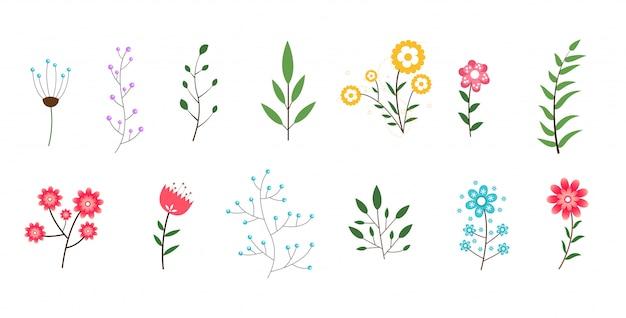 Coleção mínima de flores e folhas