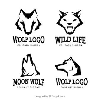 Coleção moderna do logo do lobo selvagem