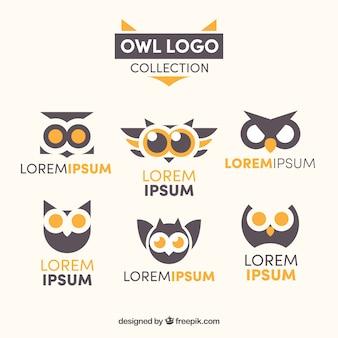 Coleção moderna do logotipo da coruja