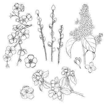 Coleção natural de primavera desenhada à mão