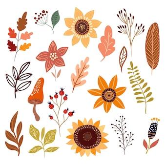 Coleção outono com diferentes plantas botânicas e flores de folhas