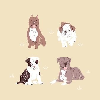 Coleção pitbull desenhada à mão
