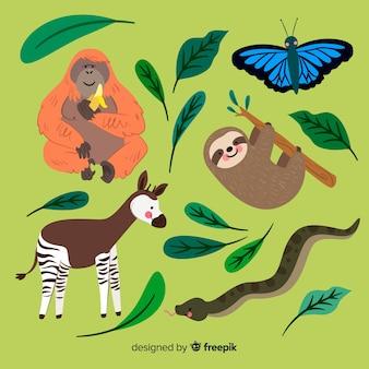 Coleção plana de animais exóticos
