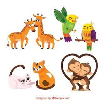 Coleção plana de casais de animais do dia dos namorados
