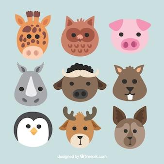 Coleção plana de rostos animais bonitos