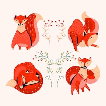 Coleção raposa laranja com flor de outono