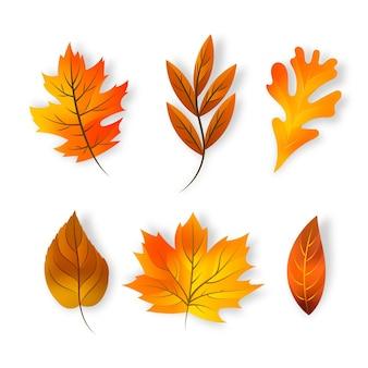 Coleção realista de folhas de outono