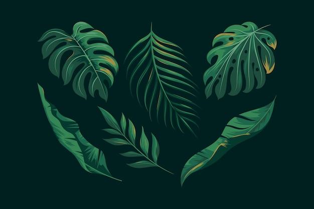 Coleção realista de folhas exóticas verdes