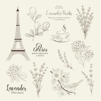 Coleção romântica de paris.