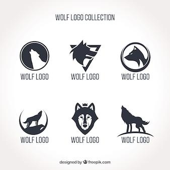 Coleção simples do logotipo do lobo
