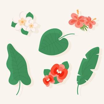 Coleção tropical de flores e folhas